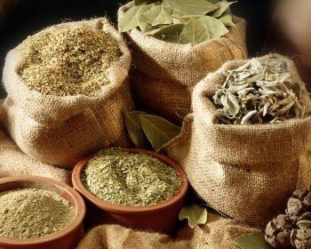 Збір, сушіння та зберігання лікарських рослин
